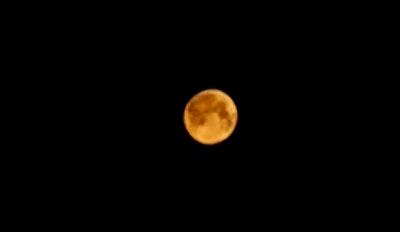 Mooncatcher20200408